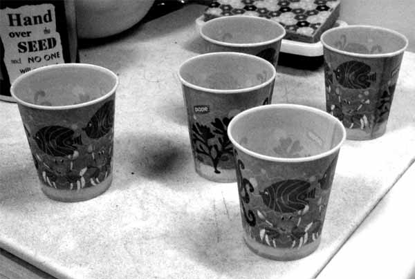 Dixie Cups from a Wasteful wife or husband