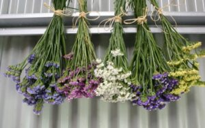 Hang flowers upside to preserve them and use as decoration for your home. (Image Credit: proflowers.com)