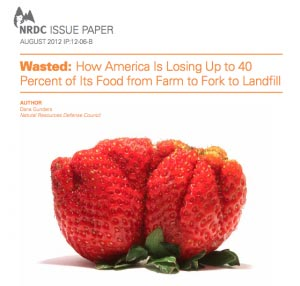 Dana Gunders NRDC Issue Paper