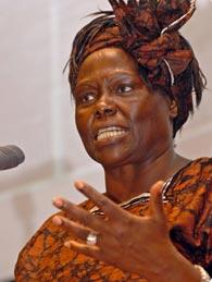 Wangari maathai essay writer