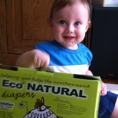 Nature's Premiere Diaper Service NYC compost