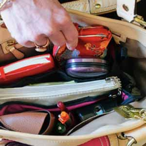 whatsinyourpurse graphic