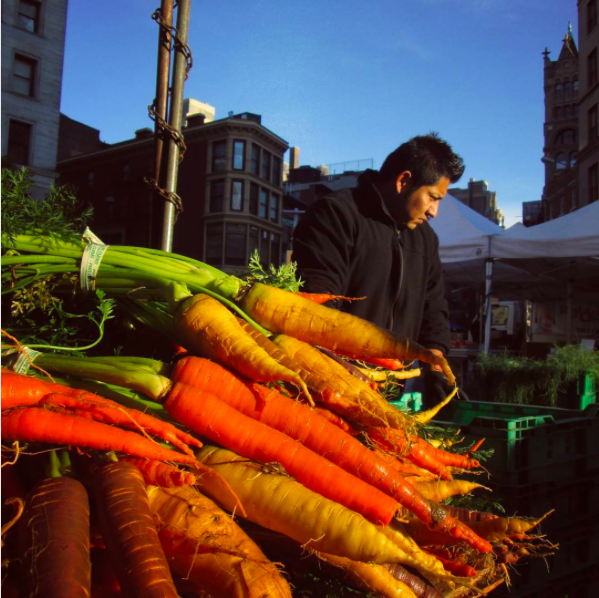 Respect Food to help get NYC to Zero waste by 2030